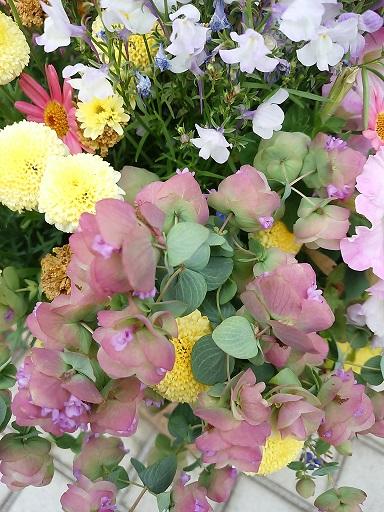 20160421_124704花